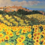 Sunflowers, Tuscany