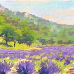Lavender Valley