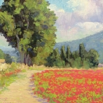 Poppy Fields Provence