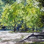 Nantahala River II